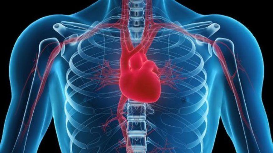 Big Study Needless Heart Procedures