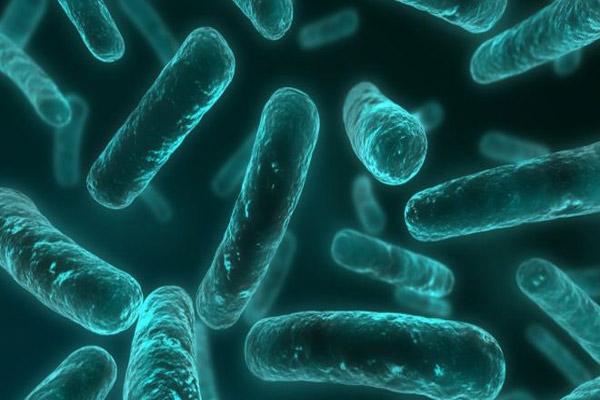Cusp Of 'Post-Antibiotic Era