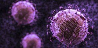 Antibody Attacks